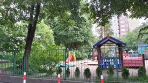 Drzewa przeszkadzają w remoncie ogrodzenia, przedszkole chce je wyciąć
