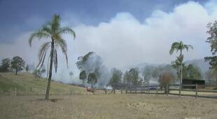 Australia zmaga się z pożarami